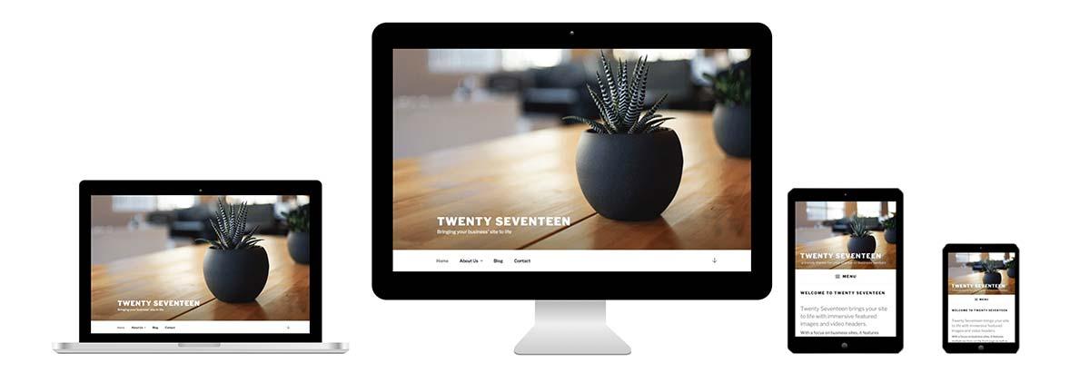 Website Theme